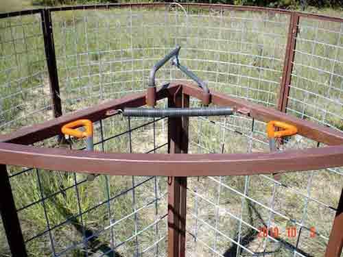 hog traps feral hog wild pig traps red river arenas